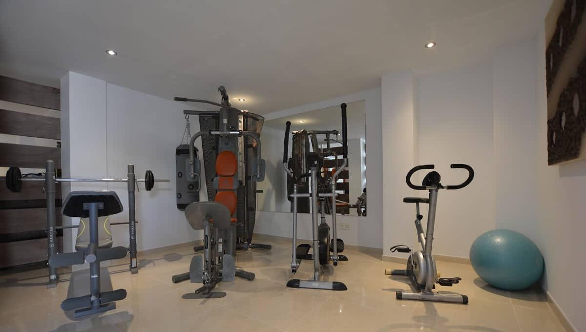19 La Viz B10 H1 Gym